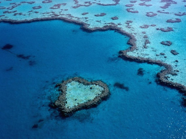 Great Barrier Heart Reef Australia Wallpaper