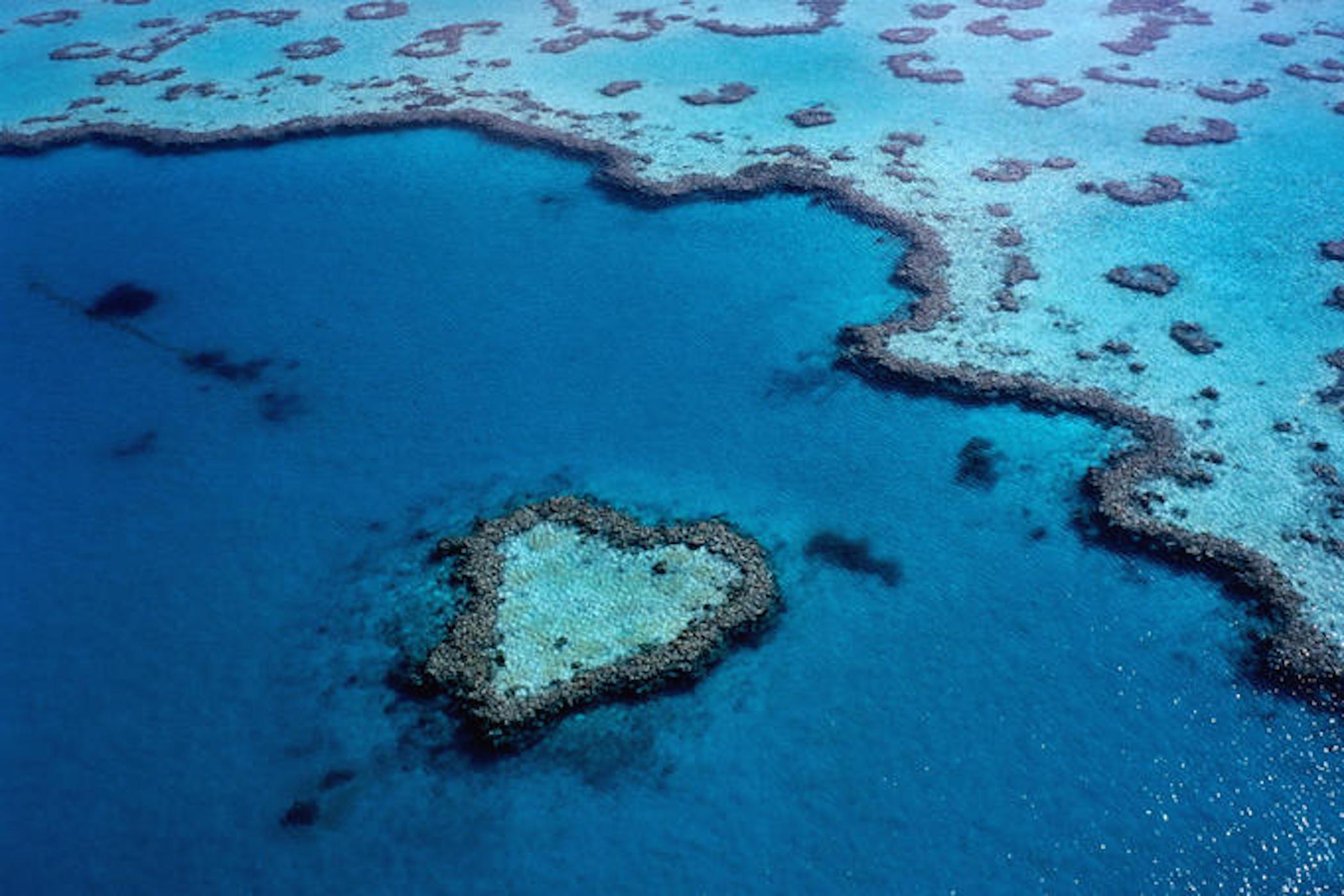 Great Barrier Heart Reef Australia Wallpaper Hd Downloads