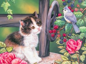 Kitten Blue Jay Painting Wallpaper