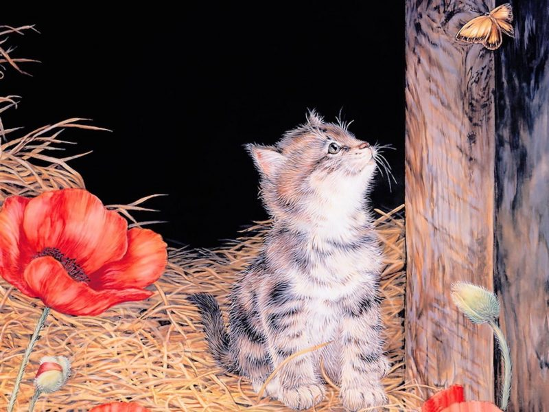 Kitten Contemplating Painting Wallpaper