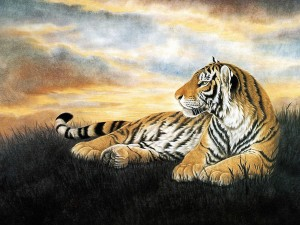 Lone Tiger Painting Wallpaper