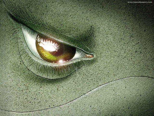 Dolphin Eye Wallpaper