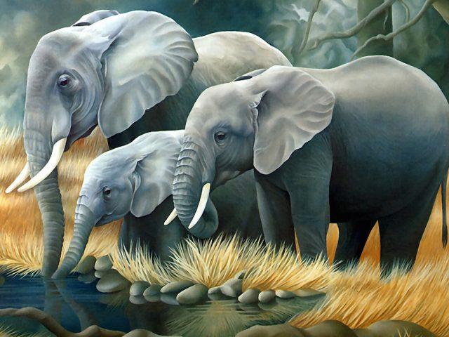 Elephant Family Painting Wallpaper
