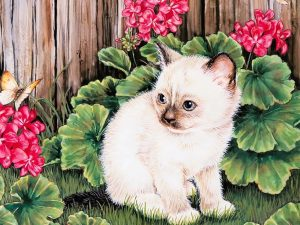 Kitten Butterfly Painting Wallpaper