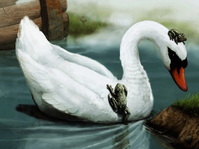 Swan Friends Painting Wallpaper