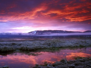 Conboy Lake Wildlife Refuge Washington Wallpaper