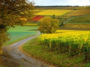 France Beautiful Nature Wallpaper