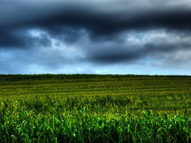 Storm Brewing Countryside Wallpaper