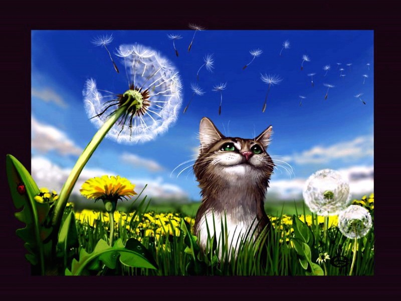 Cat Dandelions Painting Wallpaper