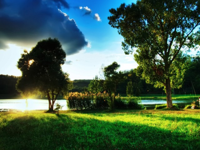 Beautiful Summer Day Landscape Wallpaper