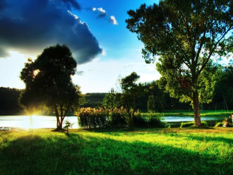 Beautiful Summer Day Landscape Wallpaper