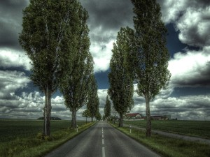 Countryside Nature Road Wallpaper