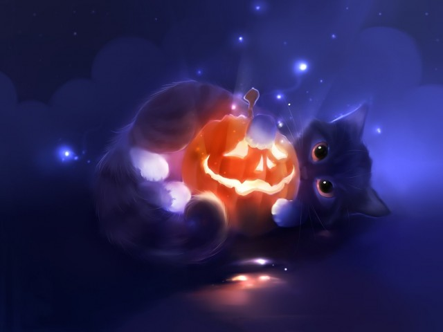 Cute Kitten Pumpkin Wallpaper