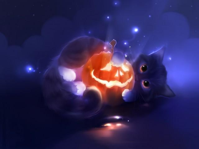 Cute Kitten Pumpkin Wallpaper