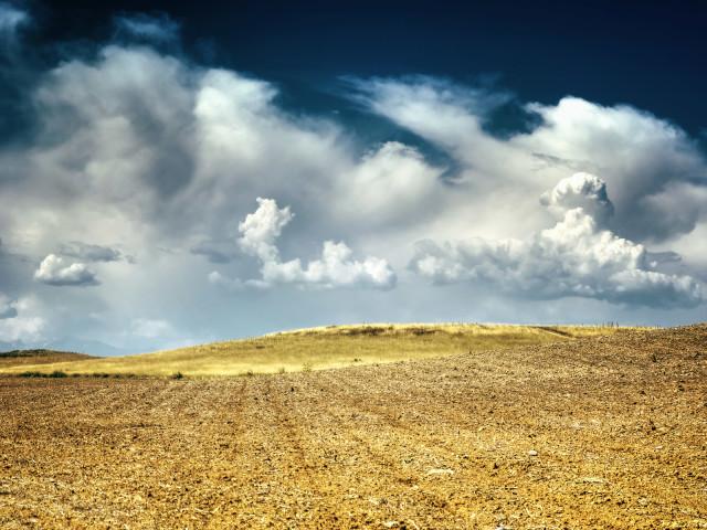 Landscapes 14