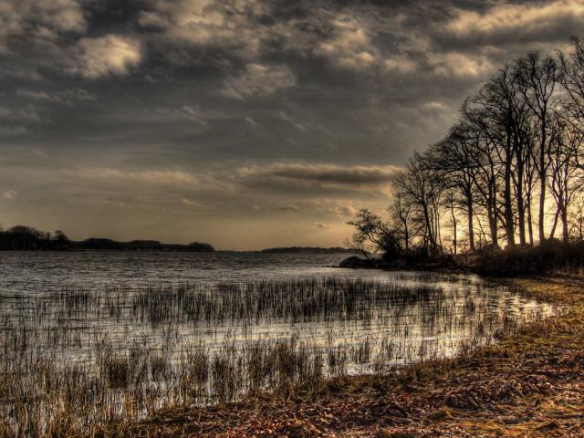 Landscapes 72