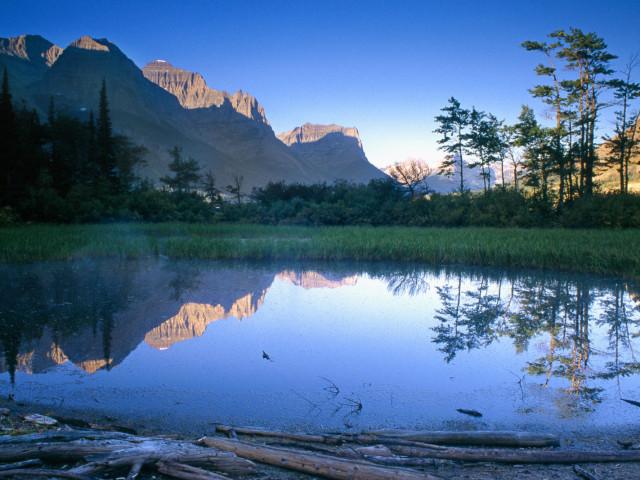 Nature 106.jpg