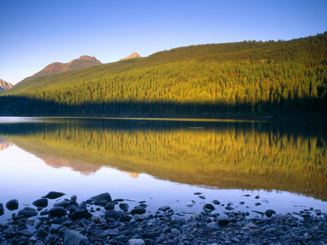 Nature 107.jpg
