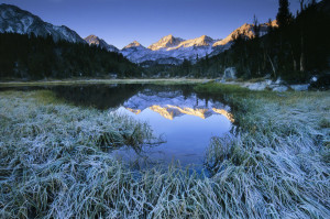 Mountain Meadow In Morning Light With Peaks Reflecting In Water. Wide Angle.