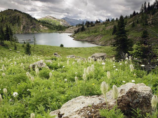Nature 85.jpg
