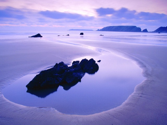 Purple Beach Landscape Wallpaper