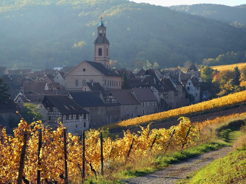 Riquewihr, Alsatian Wine Road, France