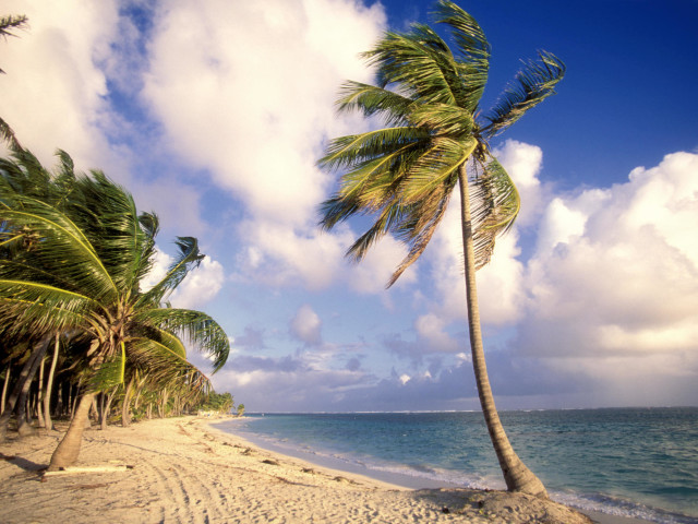 Palm Beach At Punta Cana, Dominican Republic, Caribbean