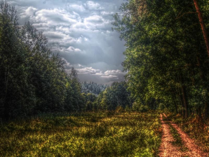 Surreal Landscape Wallpaper Free Hd Downloads