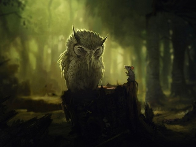 Fantasy Night Owl Wallpaper