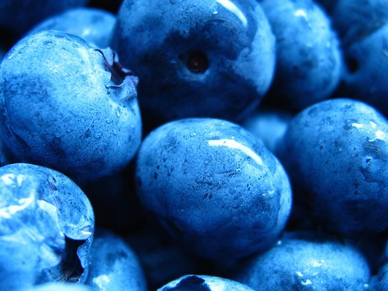 Blueberries Healthy Food Wallpaper