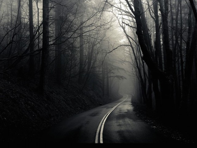 Dark Foggy Road Wallpaper