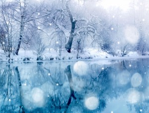 Snowy Lake Wallpaper