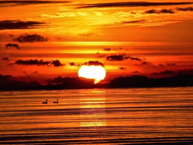Tranquil Sunset Wallpaper