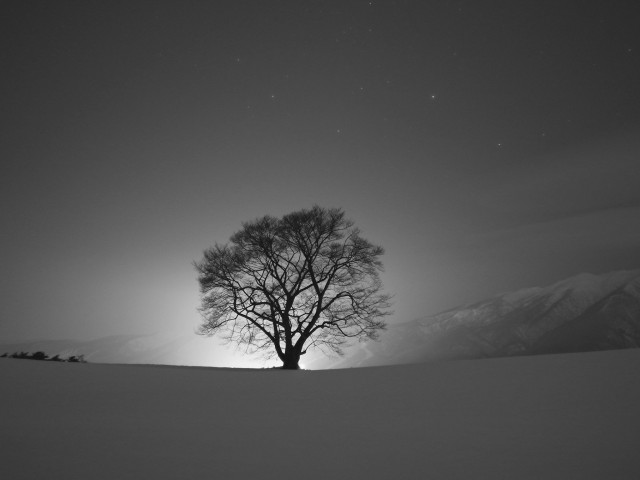 Quiet Winter Night Wallpaper