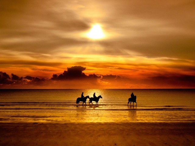 Beach Horse Riding Wallpaper