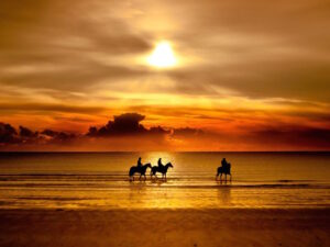 Beach Horse Riding Wallpaper